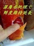 ogasawara2000yusou2.jpg