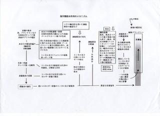 sinsousuityougou001.jpg
